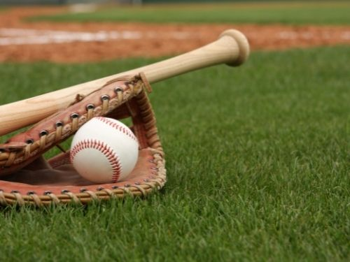 baseball field closeup of baseball in mitt with bat resting on top
